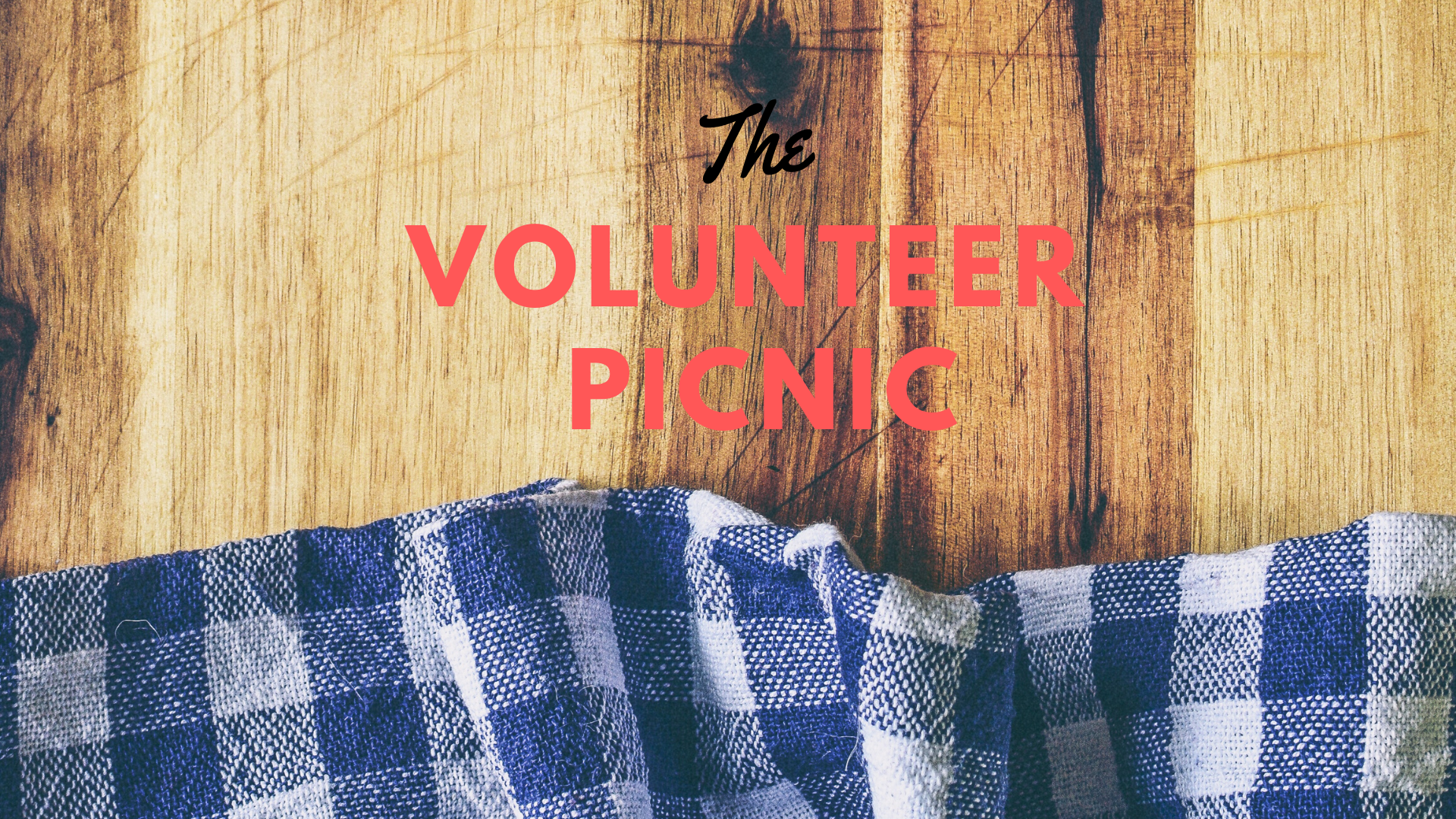Volunteer Picnic